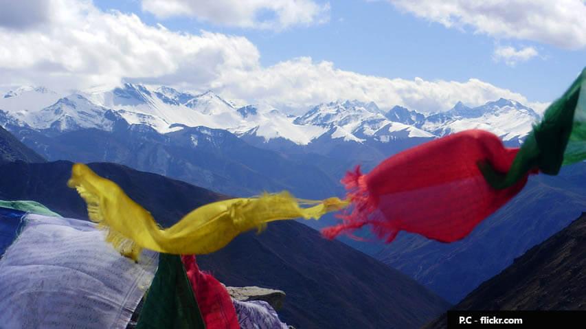 Mount Jichu Drake