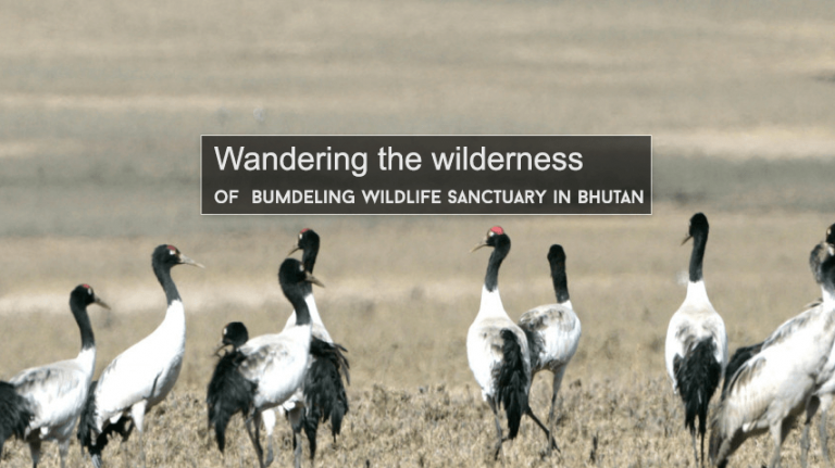 Bumdeling Wildlife Sanctuary