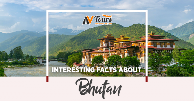 we provide bhutan travel packages